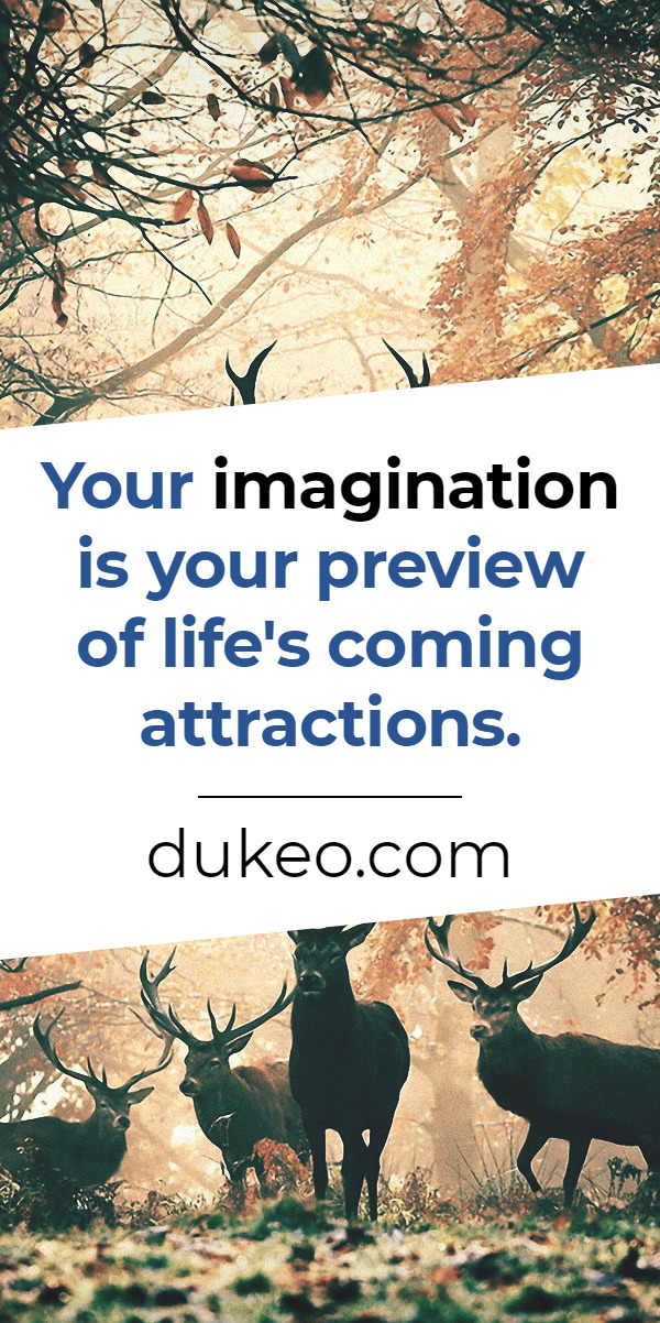 Your imagination is your preview of life's coming attractions.